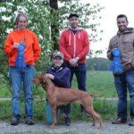 GCH JUNO's New Field Dog Junior title