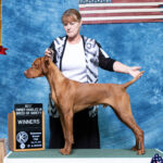 Teak gets his first point at his First Show